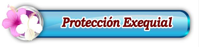 Protección Exequial